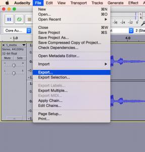Audacity screenshot export